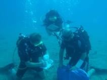 Matthew Harpster, Rebecca Ingram, Mustafa Kiremitçi off Boğsak Island, 2014