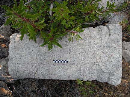 Column from Dana Island